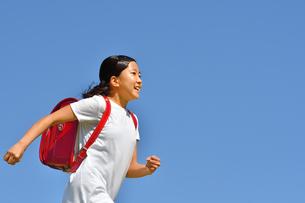青空で走る小学生の女の子(ランドセル)の写真素材 [FYI03437485]