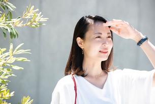 日差しを浴びている女性の写真素材 [FYI03437521]