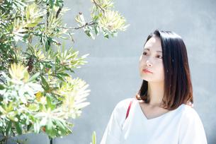 日差しを浴びている女性の写真素材 [FYI03437524]