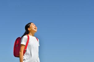 青空で見上げる小学生の女の子(ランドセル)の写真素材 [FYI03437535]
