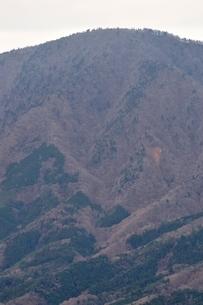 鳥ノ胸山から眺める御正体山の写真素材 [FYI03437752]