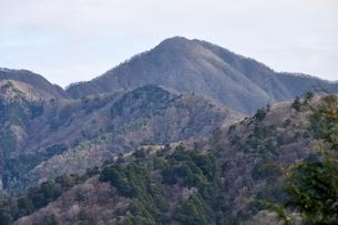 大界木山より望む大室山の写真素材 [FYI03437764]