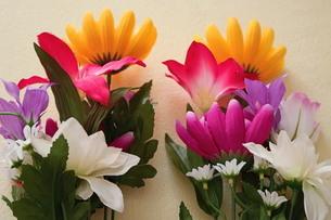 仏花の写真素材 [FYI03437970]