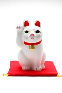 招き猫・置物の写真素材 [FYI03438045]