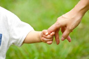 親子の手の写真素材 [FYI03438066]
