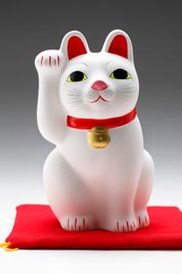 招き猫の写真素材 [FYI03438096]