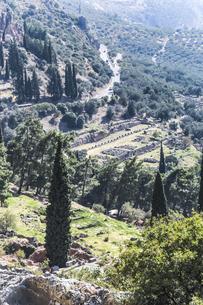 デルフィ遺跡アテナ・プロナイアの聖域を望むの写真素材 [FYI03438140]