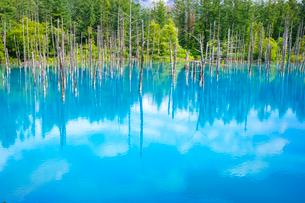 青い池の写真素材 [FYI03438172]