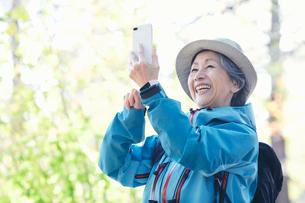 スマートフォンを持つシニア女性の写真素材 [FYI03438327]
