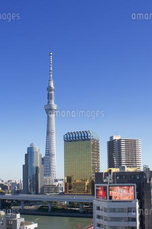 縦位置の東京スカイツリーの写真素材 [FYI03438328]