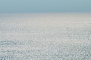 大海に一艘の船の写真素材 [FYI03438433]
