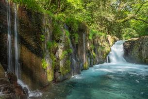 菊池渓谷の流れの写真素材 [FYI03438474]