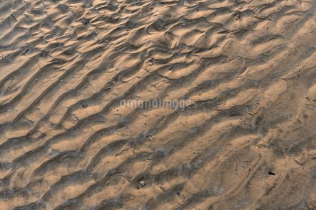 砂浜の波紋の写真素材 [FYI03438476]