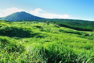 緑の阿蘇山の写真素材 [FYI03438485]