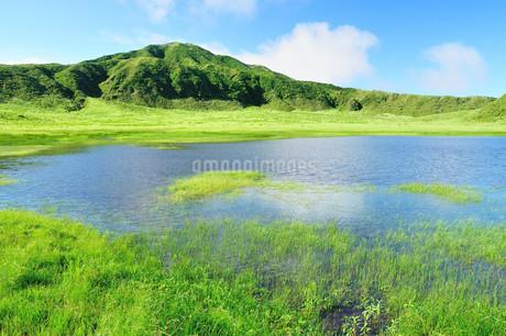 緑の草千里の写真素材 [FYI03438486]
