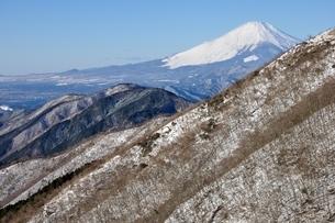 丹沢越しの富士山の写真素材 [FYI03438662]