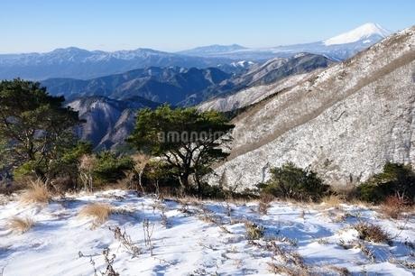 雪の大倉尾根からの展望の写真素材 [FYI03438663]