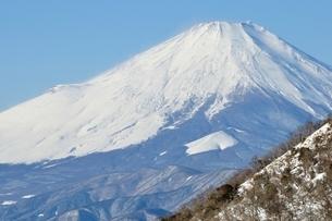 丹沢越しの富士山の写真素材 [FYI03438666]
