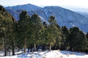 大倉尾根より大山と三ノ塔を望むの写真素材 [FYI03438674]