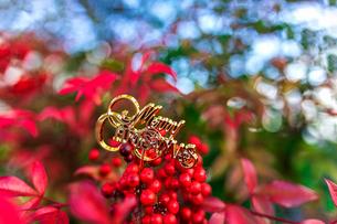 メリークリスマスの写真素材 [FYI03438931]