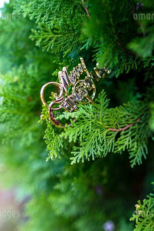 メリークリスマスの写真素材 [FYI03438934]