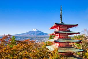 新倉山浅間公園より望む富士山の写真素材 [FYI03439142]