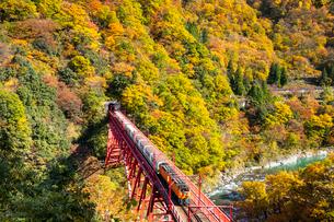 黒部峡谷鉄道のトロッコ列車の写真素材 [FYI03439165]
