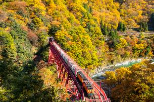 黒部峡谷鉄道のトロッコ列車の写真素材 [FYI03439166]