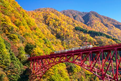 黒部峡谷鉄道のトロッコ列車の写真素材 [FYI03439167]