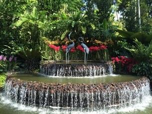 植物園の風景の写真素材 [FYI03439246]