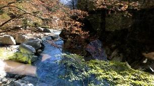 渓流の写真素材 [FYI03439426]