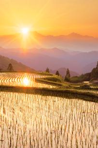 棚田と鹿島槍ヶ岳に沈む夕日の写真素材 [FYI03439498]