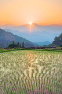 棚田と鹿島槍ヶ岳に沈む夕日の写真素材 [FYI03439499]