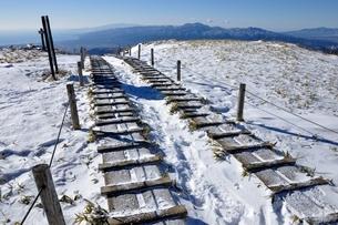 雪景色の花立の写真素材 [FYI03439536]