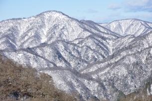 雪の西丹沢山稜の写真素材 [FYI03439537]