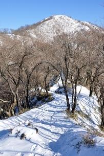 塔ノ岳への雪道の写真素材 [FYI03439539]