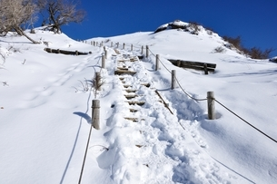 雪の塔ノ岳山頂直下の写真素材 [FYI03439552]