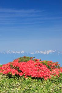 思い出の丘のレンゲツツジと穂高連峰と槍ヶ岳の写真素材 [FYI03439760]