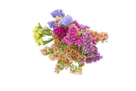 スターチスの花束の写真素材 [FYI03439890]