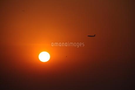 サンパウロの落日の写真素材 [FYI03440060]
