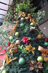ブラジルのクリスマス飾りの写真素材 [FYI03440074]