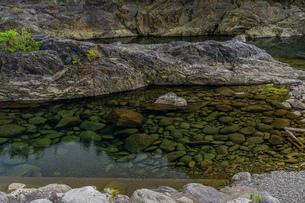 透明な渡良瀬川の写真素材 [FYI03440199]