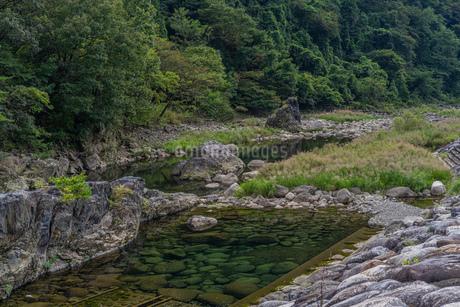 透明感のある渡良瀬川の写真素材 [FYI03440200]