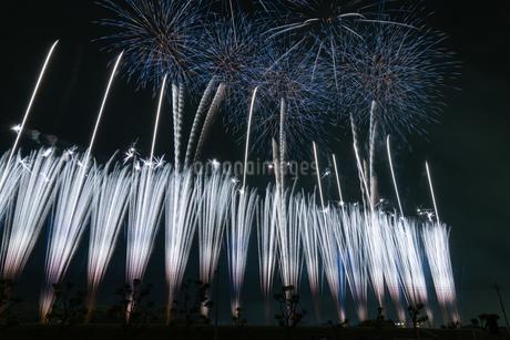 伊勢崎花火の写真素材 [FYI03440205]