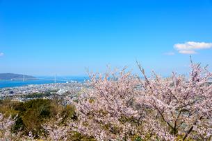須磨浦山上より明石海峡大橋を望むの写真素材 [FYI03440522]