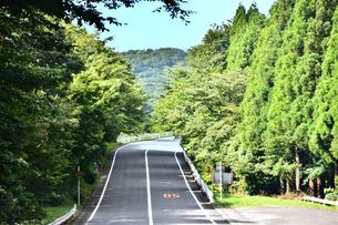 峠道の写真素材 [FYI03440636]