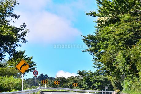 峠道の写真素材 [FYI03440638]