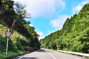 峠道の写真素材 [FYI03440639]