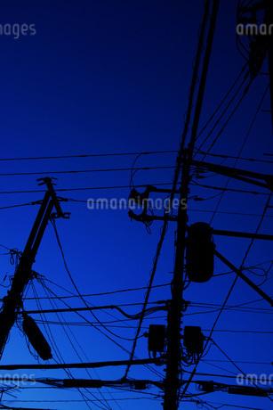 電線と電柱の写真素材 [FYI03440705]