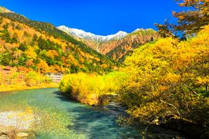 快晴の上高地 梓川の清流と冠雪の穂高連峰に紅葉の写真素材 [FYI03440780]